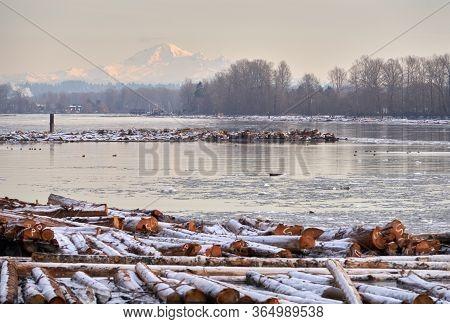 Mt Baker Fraser River Winter. Mt Baker And Log Booms With Ice On The Fraser River.