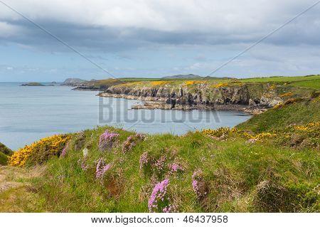 Wales Coast Path Pembrokeshire