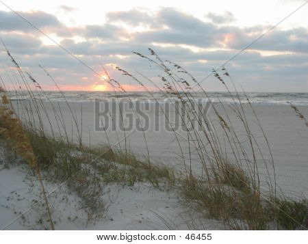 Florida. Beach Sunset