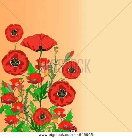 Poppy Notepaper