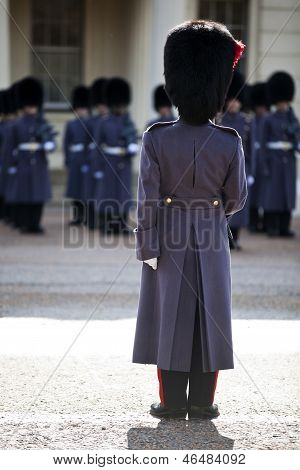 Grenadier Guards Wearing Winter Greatcoat