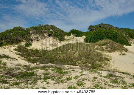 NaNa Dunes at American Beach
