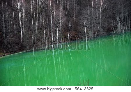 Contaminated Lake Water