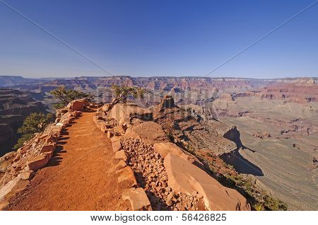 Trail Into A Wild Canyon