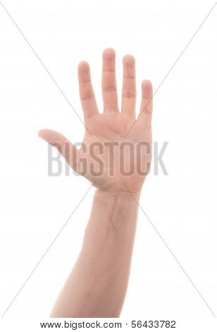 Masculine Male Hand Signaling to Stop or Hail a Cab