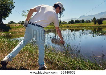 lost golf ball in water hazard golfer looking in reeds