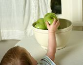 small child reaches for a healthy and delicious granny smith apple poster