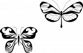 Isolated butterfly tattoos in tribal style on white background poster
