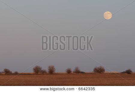 Moonrise Over Farm Field