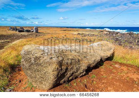 Moai Lying Facedown
