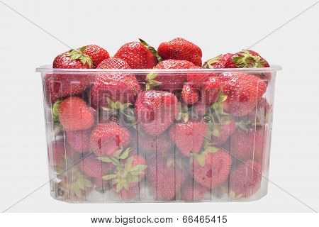 Strawberries In Transporent Box