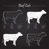 Scheme american cuts of beef - milk cow cuts elements on blackboard poster