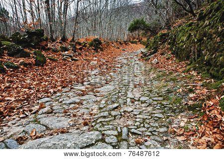 Mountain Roman Road