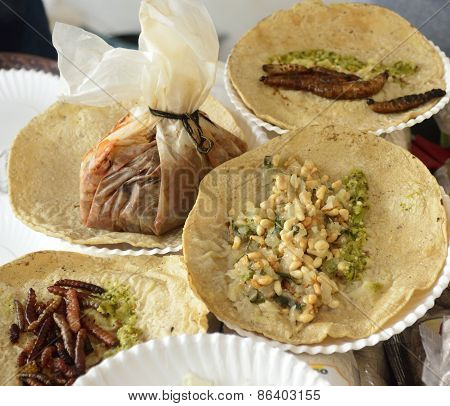 Fried insect and worm tacos, Mexican cuisine