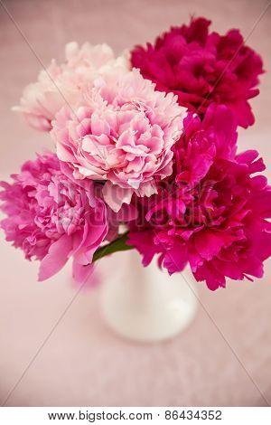 White Vase With Peonies