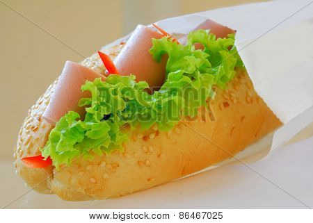 Hands Pack Up Sandwich