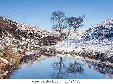 Yorkshire Moorland Winter Landscape