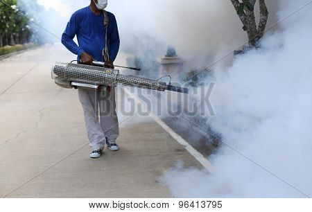 Fogging Mosquito To Prevent Of Dengue Fever
