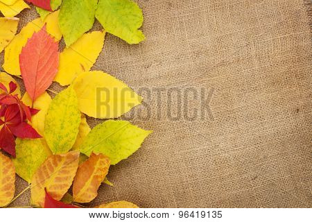 Autumn leaves over burlap texture background with copy space