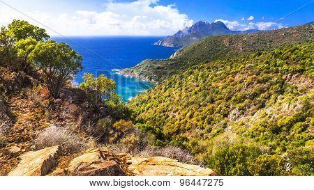 landscape of beautiful Corsica island