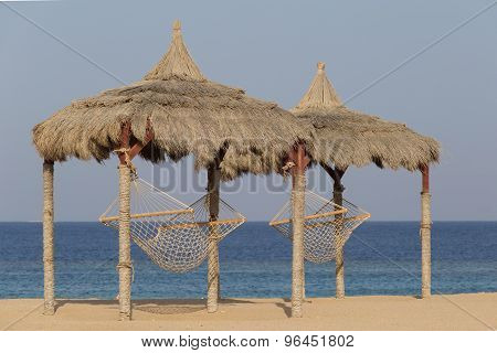 Hammock On A Red Sea Beach