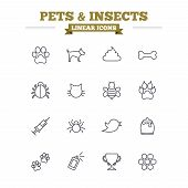 Pets and Insects linear icons set. Dog paw. Cat paw with clutches. Bone, feces excrement and vaccination. Honey, bee and honey comb. Thin outline signs. Flat vector poster