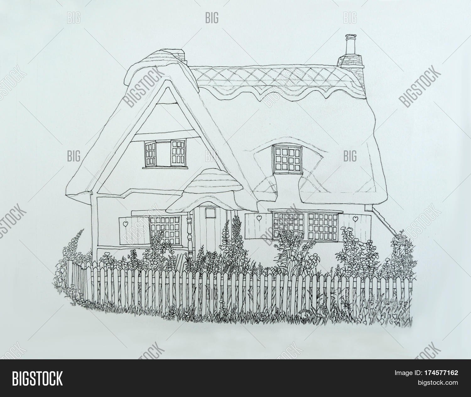 Ink Line Drawing Of English Thatched Cottage With Picket Fence And Garden