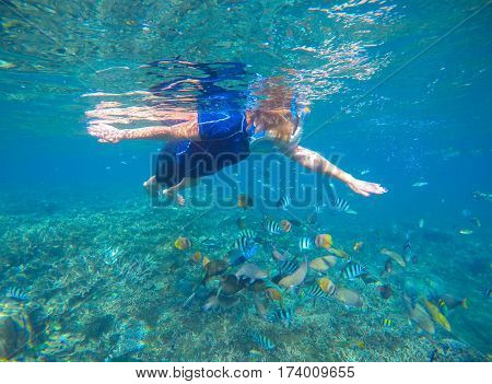 Snorkel and coral fishes underwater in swimming costume and full-face mask. Blue sea banner template with text place. Underwater photo of woman swimming in modern gear. Snorkeling in coral reef image