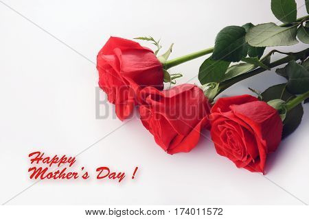 Red roses close up. Beautiful bouquet. Happy Mother Day card