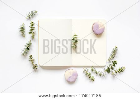 Spring trandy design with lavander macaroons, copybook and eucalyptus on white background top view mockup
