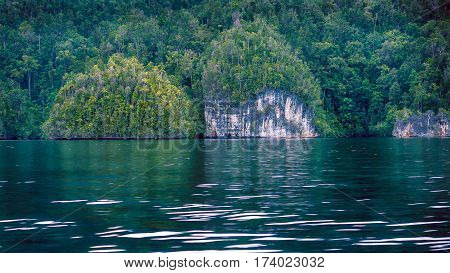 Rocks overgrown with Palmtrees in Hidden Bay on Gam Island near Kabui Bay and Passage. West Papuan, Raja Ampat, Indonesia