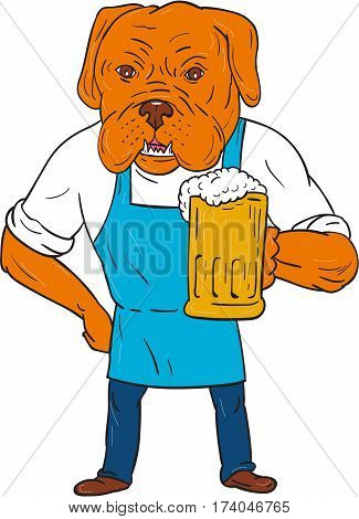 Illustration of a Dogue de Bordeaux Bordeaux Mastiff French Mastiff or Bordeaux dog a large French Mastiff breed wearing apron holding beer mug with one hand on hip viewed from front set on isolated white