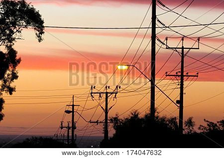 Suburban street sky sunset Australia Aussie town city telegraph pole wires gum tree silhouette