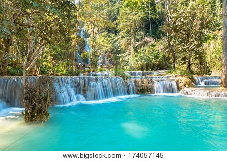 Waterfall in forest names