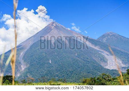 Smoke puffs from Fuego volcano Escuintla, Guatemala, Central America