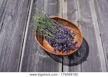 bunch fresh medical lavender herb flowers in basket on old wooden background