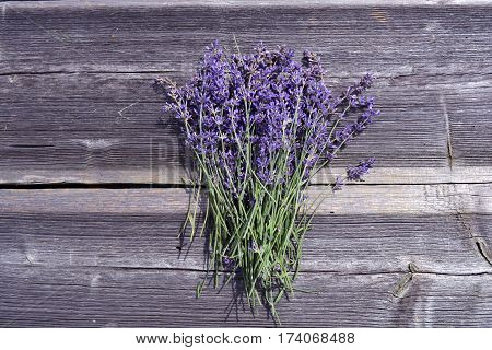 fresh beautiful lavender medical flowers bunch on old wooden gray background