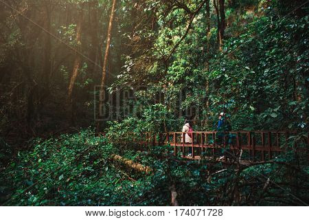 Tourist walking on a wooden bridge above the tropical jungle