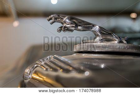 Jaguar Emblem (jaguar In The Jump) On Very Old Jaguar Car