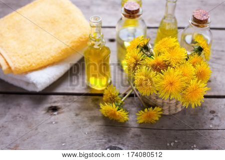 Fresh yellow flowers tussilago in mortar on wooden background. Wellness setting. Selective focus.