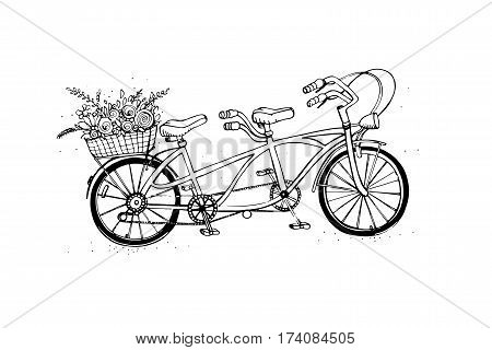 Vintage, retro style. Sketch vector illustration. Hand drawn tandem city bicycle with basket of flower.