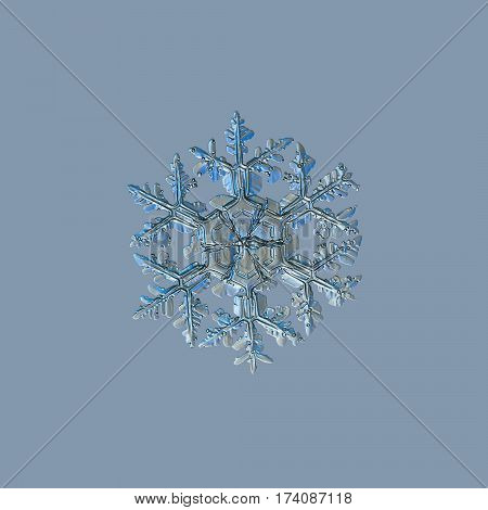 Snowflake on uniform grey background. This is macro photo of real snow crystal: large stellar dendrite with massive, ornate arms and big central hexagon, divided by six sectors.