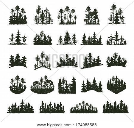 Tree outdoor travel black silhouette logo coniferous natural badges, tops pine spruce branch cedar and plant leaf abstract stem drawing vector illustration. Panorama scene horizon decoration.