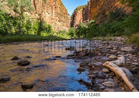 Zion National Park is a southwest Utah nature preserve distinguished by Zion Canyon's steep red cliffs. Zion Canyon Scenic Drive cuts through its main section leading to forest trails along the Virgin River.