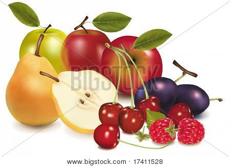 Photo-realistic vector illustration. Group of fruit.