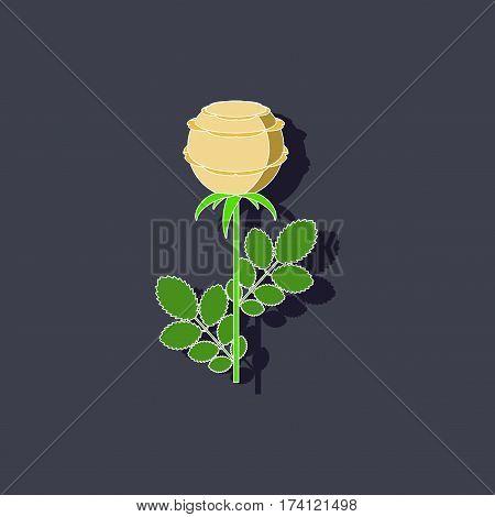 paper sticker on stylish background of plant rosa