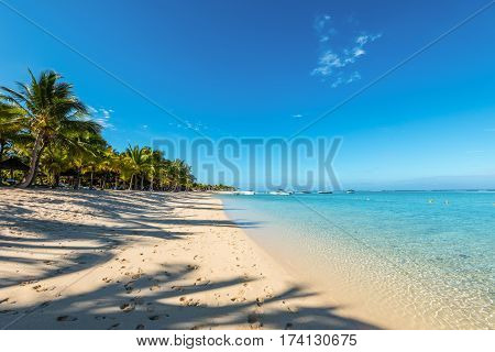 Le Morne Mauritius - December 11 2015: Amazing white beaches of Mauritius island. Tropical vacation in Le Morne Beach Mauritius. The shadow of the palm trees in the foreground.