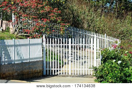 White Picket Fence In The Garden