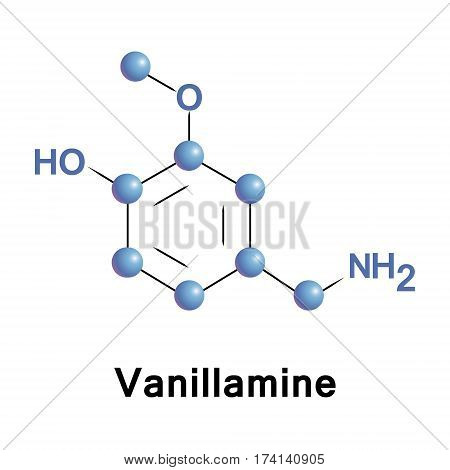 Vanillamine vector molecular structure, component of the extract of the vanilla bean.