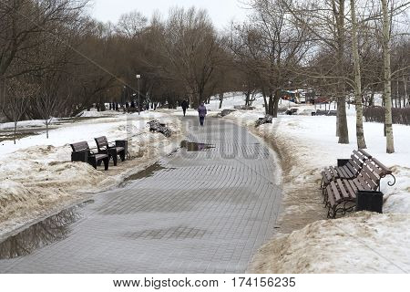 Park benches in the winter morning day.